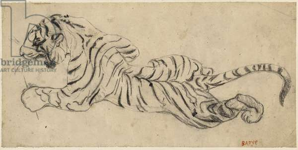 Tigre (Tiger), c.1835 (black chalk on tracing paper, mounted to board)