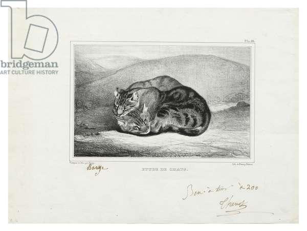Étude de chats, 1836 (litho on wove paper)