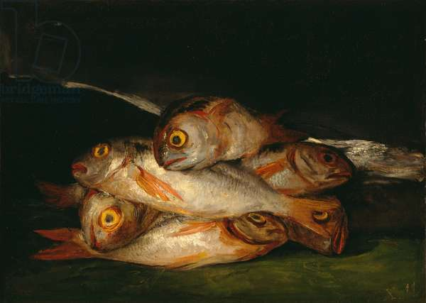 Still Life with Golden Bream, 1808-12 (oil on canvas)
