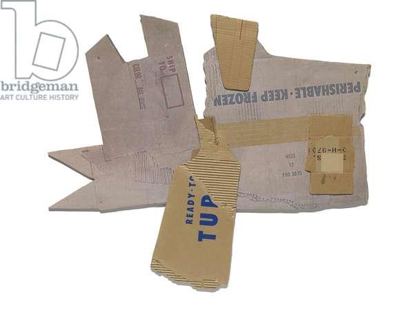 Cardbird V, 1971 (photo color offset and screenprint on cardboard, tape, plastic)