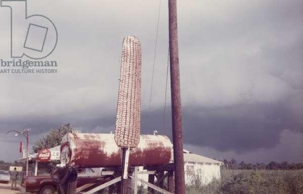 Corn Sign with Storm Cloud, Near Greensboro, Alabama, 1977 (chromogenic print)