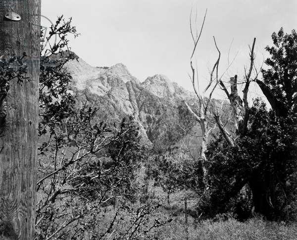 Near Willard, Utah, 1978 (gelatin silver photograph)