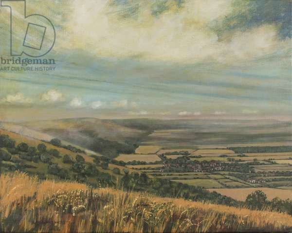 Late Summer on the Downs at Poynings, 1995 (oil on canvas)