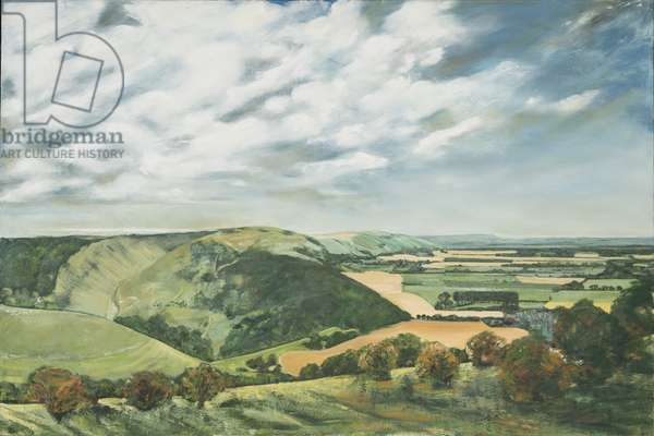 Devil's Dyke Poynings, 1989 (oil on canvas)