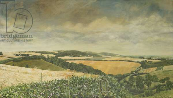 Hilltop Farm, North Stoke, 1995 (oil on canvas)