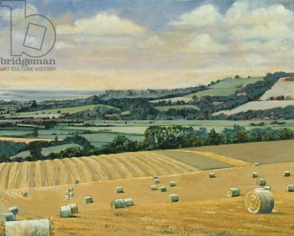 Harvest on the North Stoke, 1995 (oil on canvas)