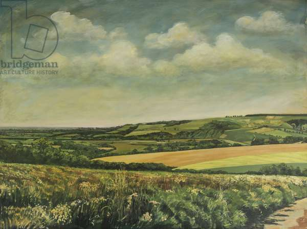 Arundel Castle from the Downs, 1995 (oil on canvas)