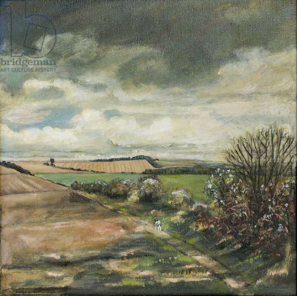 Storm Clouds over Angmering Estate, 2007 (oil on canvas)