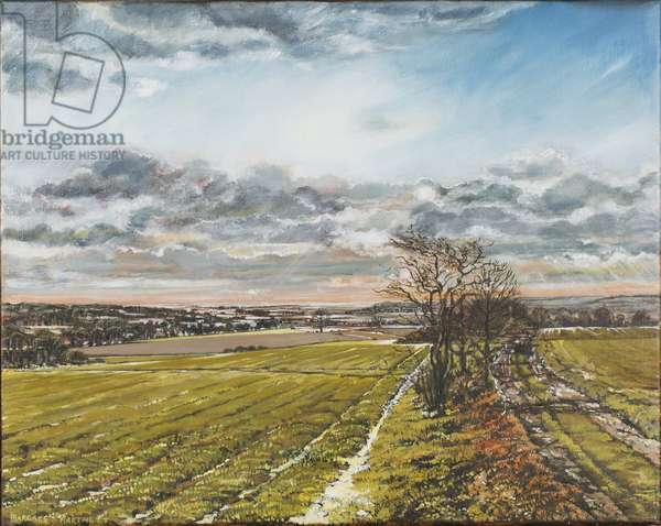 Christmas Day on the Downs, 1997 (oil on canvas)