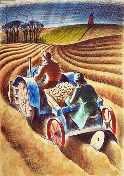 Planting Potatoes, 1953 (ink & w/c)