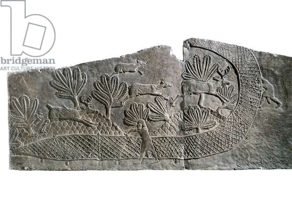 Hunting deers trapped in the net, Scene of Ashurbanipal, from Royal Palaces of Nineveh, c.645 BC (stone bas relief)