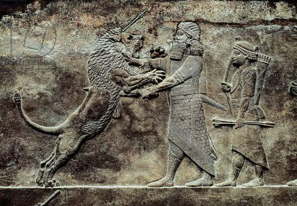 Hunting scene of the Assyrian king Ashurbanipal against a lion, Palace of Ashurbanipal, King of Assyria, 669-627 BC (stone relief)