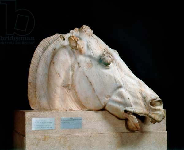 Head of the horse of Selene, marble sculpture by Phidias, 5th century BC.