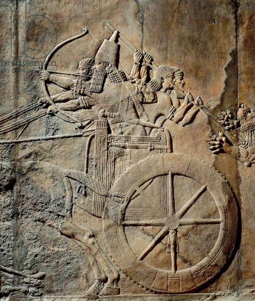 Representation du roi Assurbanipal ou Ashurbanipal sur son char. Detail d'un bas relief provenant du Palais d'Assurbanipal ou Ashurbanipal, roi d'Assyrie (Mesopotamie) (669 av JC-627 av. JC) The British Museum. Londres.