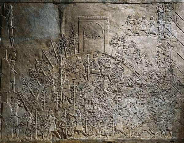 Palace gardens and gardeners, Ashurbanipal hunting, detail, from Nineveh, Iraq
