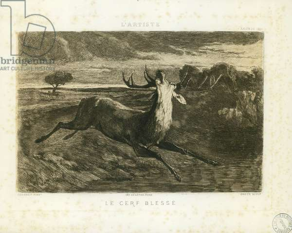 The deer hurts (19th century)