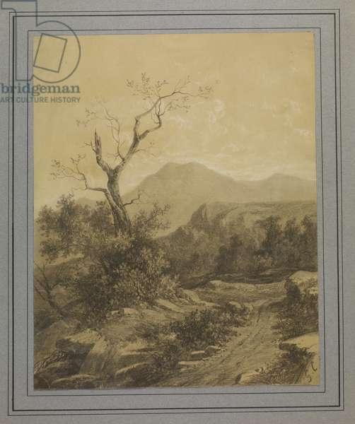 Landscape with Tree (circa 1840)