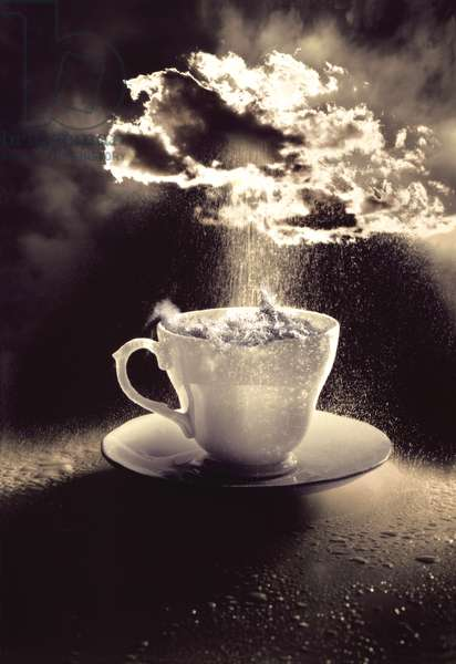 Storm in a Teacup, 1987 (b/w photo)