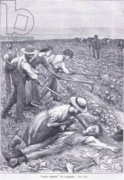 Gang system of farming (litho)