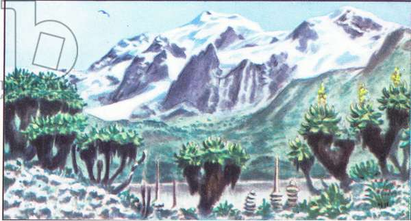 The National Albert Park: The Massif of Ruwenzari, from colour Liebig postcard (colour litho)