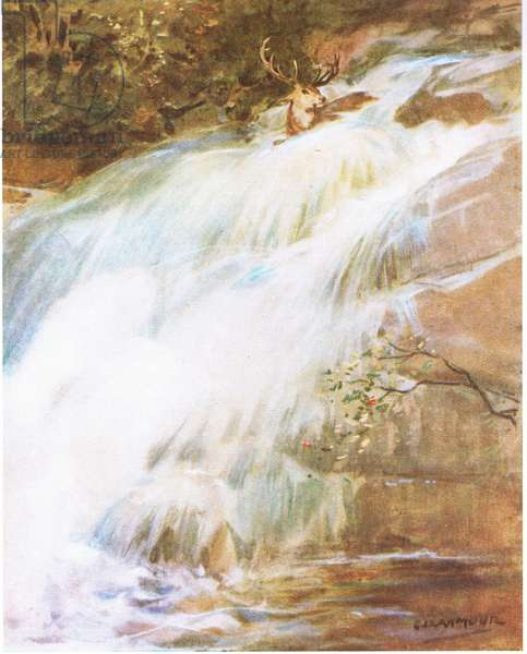 Throwing his head high in the air in a last act of defiance, he plunged into the waterfall (colour litho)