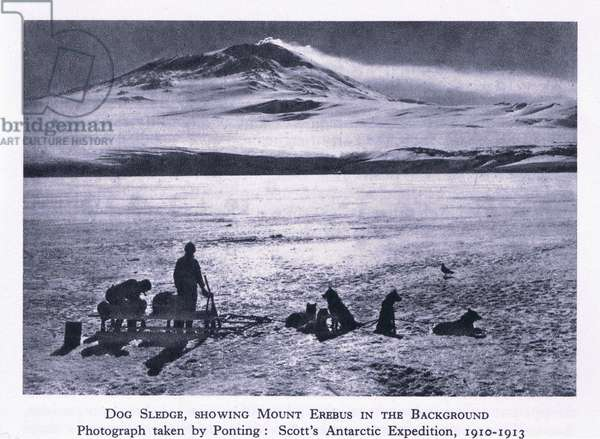 Dog sledge showing Mount Erebus in the background, from British Adventure published by Collins, 1947 (b/w photo)