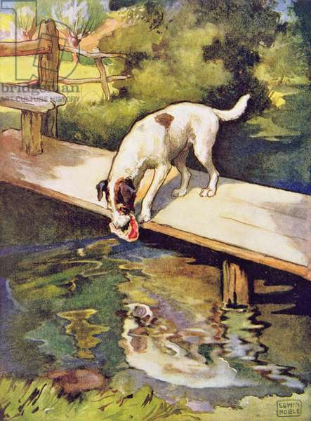 The Dog and the Shadow from 'Aesop's Fables', pub. by Raphael Tuck & Sons Ltd., London (book illustration)