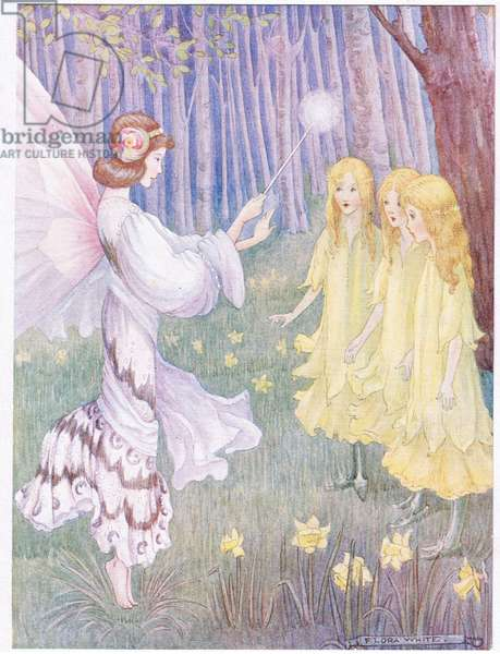 In the Daffodil's places stood three tall pretty maidens (colour litho)