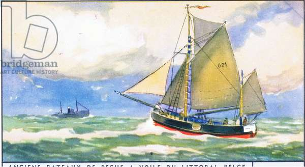 Chaloupe of Ostend, illustration from Liebig Trade Cards (1940's) Old Fishing Boats of the Belgium coast (colour litho)