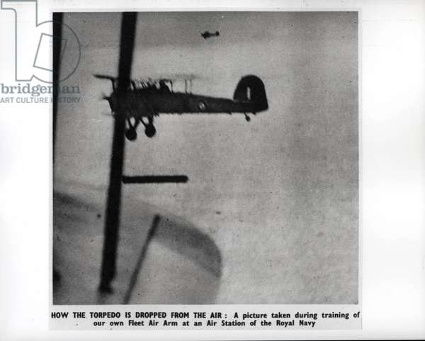 How the torpedo is dropped from the air, c.1941 (b/w photo)