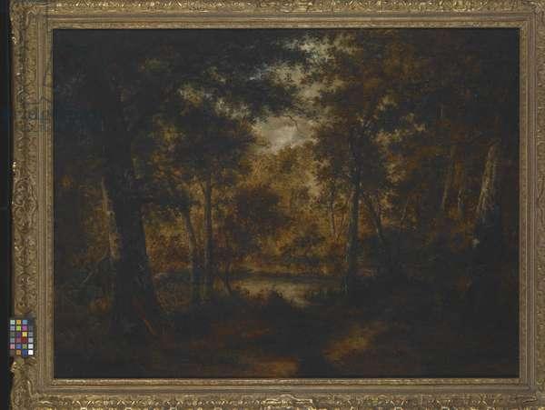 The Fairy Pool (oil on canvas)