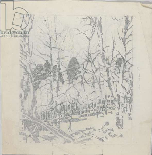 Study for Aspen Thicket, c.1943 (graphite on paper)