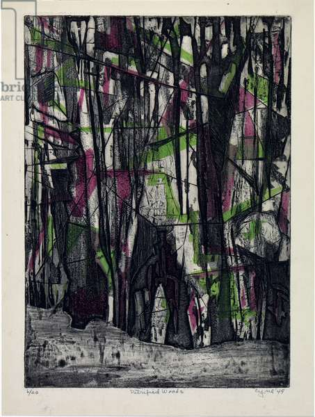 Petrified Woods, 1949 (colour aquatint with engraving)
