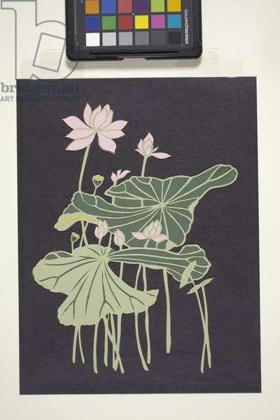Lotus (multicoloured cut paper)