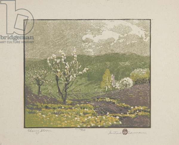 The Cherry Blossom, 1917 (colour woodblock print on paper)