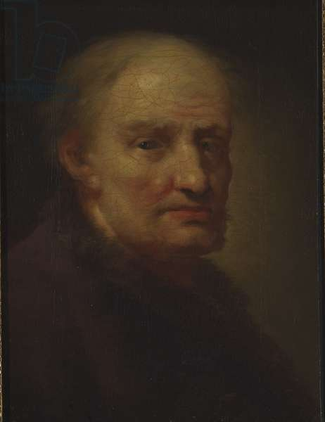 Head of an Old Man (oil on canvas)
