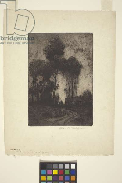 On A Country Road #2 (etching and aquatint)