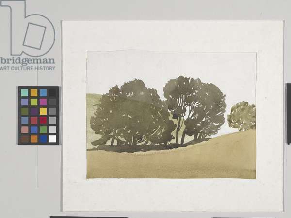 Trees And Hillside, Brown County (watercolour over graphite on white textured paper)