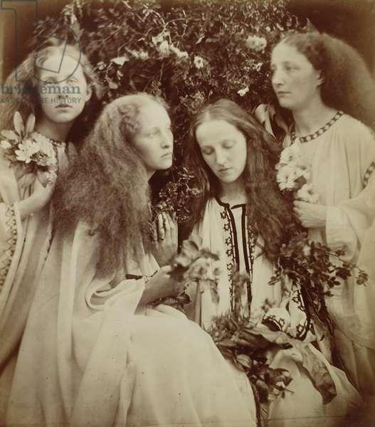 The Rose Bud Garden of Girls (albumen print)