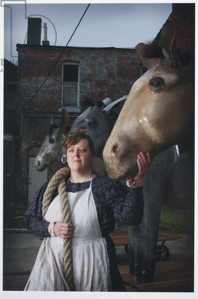 The Donkey, the Jackass and the Mule, 2008 (photo)