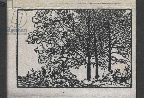 In the Hills o'Brown: Miniature Proofs, 1910 (woodblock print on paper)