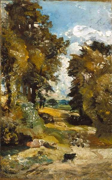 The Cornfield (oil on canvas)