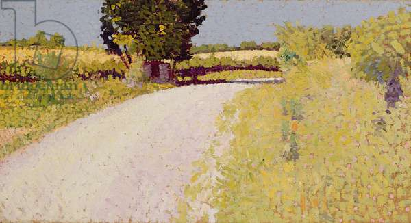 Path in the Country, c.1886 (oil on canvas)