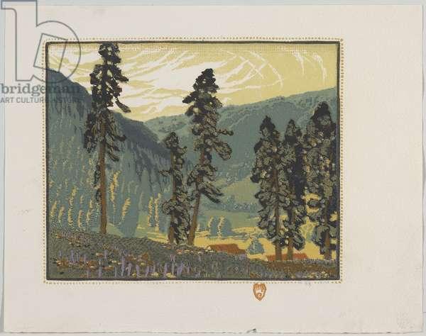 Big Timber, Upper Pecos, 1925 (colour woodblock print on paper)