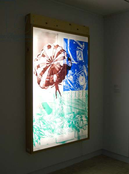 Sling-Shots Lit #3 (assemblage with screenprints on mylar and sailcloth)