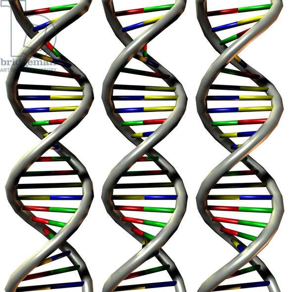 Synthesized image: structure of DNA molecule (desoxyribonucleic acid or DNA) has double helice.