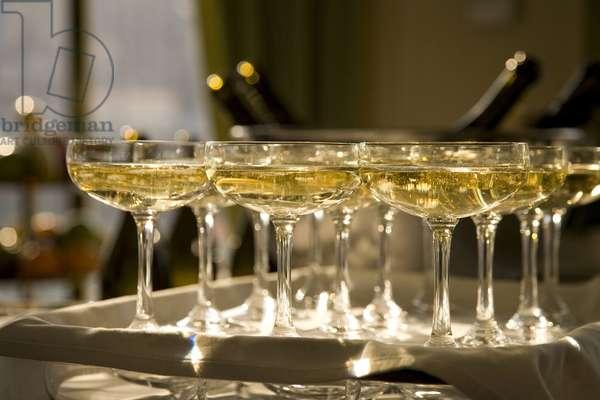 Champagne, glasses