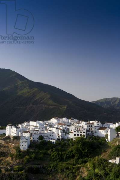 Istan, Costa del Sol, Andalusia (Andalusia), Spain, Europe
