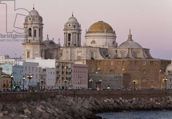 The Cathedral of Cadiz (Cadiz), Andalusia (Andalusia), Spain, Europe