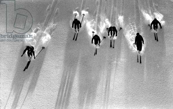Sport: silhouette of skiers descending a ski slope in powder snow.